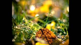 Arash feat. Rebecca - Temptation Remix [Payami Club]