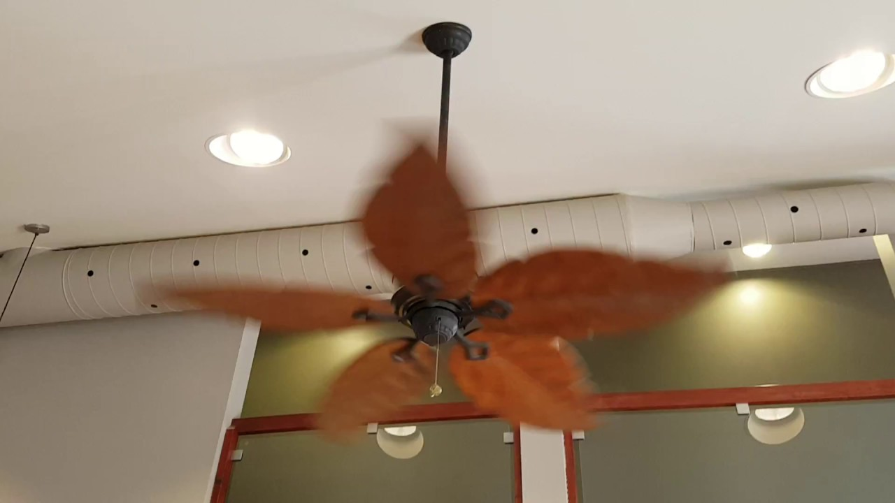 "52"" Hampton Bay Antigua Ceiling Fans"
