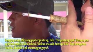Video Film Pendek Banjarmasin 'MAFIA BANJAR' download MP3, 3GP, MP4, WEBM, AVI, FLV Juni 2018