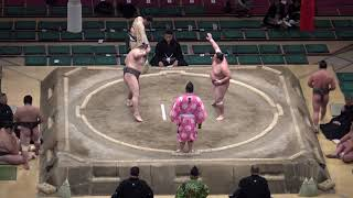 魁渡-寺尾/2018.1.28(15)/kaito-terao/day15 #sumo