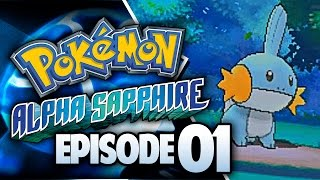 One of TheKingNappy's most viewed videos: Pokémon Alpha Sapphire Let's Play w/ TheKingNappy! - Ep 1 A New Chapter