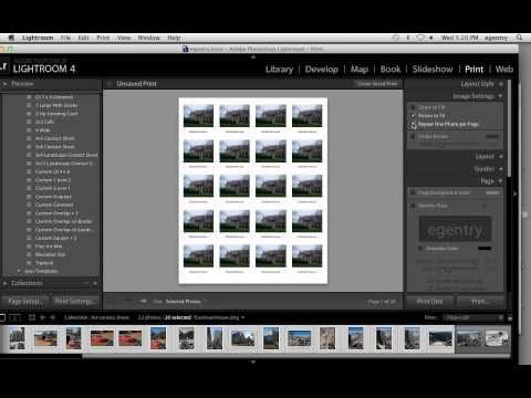 Erika Gentry Education: LR 4.0 Contact Sheets & 8x10 output