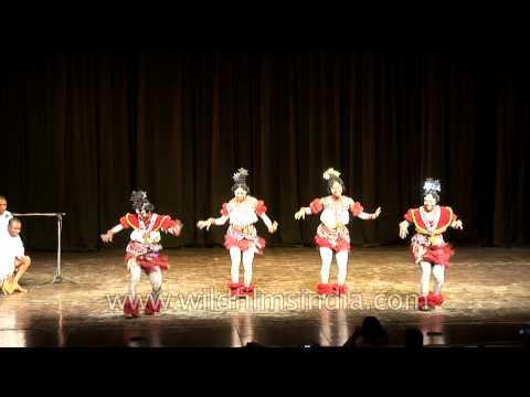 Efik Calabar dancers performing at Africa festival 2010 in New Delhi