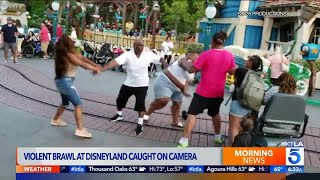 Movie Viral Video Shows Fight At Disneyland from