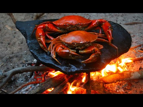 Cooking Land Crabs on Rock - Cook Crab seafood bbq eat with Chili Sauce