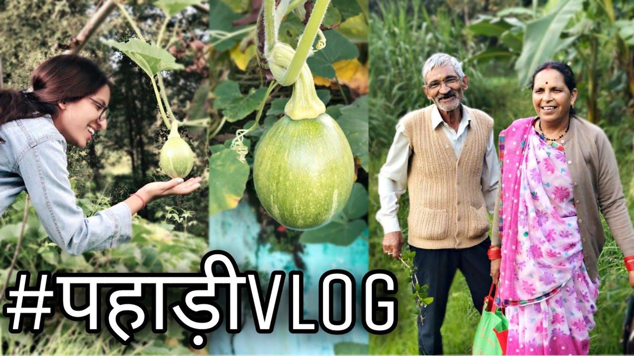 रंगिल बौज्यू||Village Life||Pahadi Vlog||Koni Pathak||