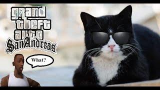 Кот гангстер GTA:San Andreas ПРИКОЛ
