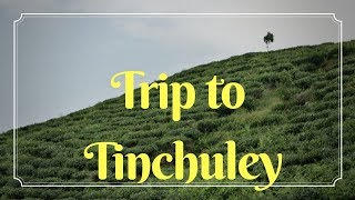 Trip to Tinchuley || Awesome experience || Darjeeling || North Bengal ।। তিনচুলে