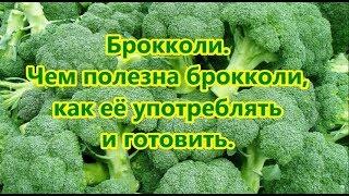 Брокколи  Чем полезна брокколи как её употреблять и готовить