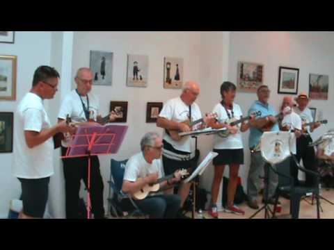 Palacefields Ukelele Group Halton Arts Hub