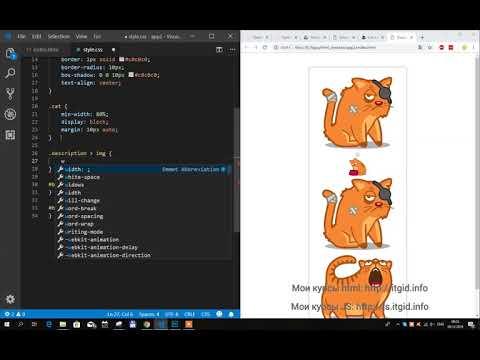 HTML+CSS. Карта котиков