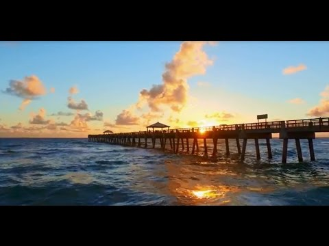 Discover the Palm Beaches - The Perfect Place