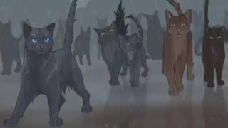 (AMV) Warriors Cats/Коты-воители - Skillet - Rise(rus)/восстань