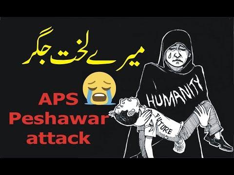 Mere Lakhte Jigar Mere Noor e Nazar | APS Peshawar Attack 16 Dec 2014