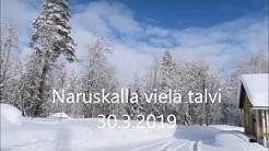 Naruskan Talvi 30 3 2019
