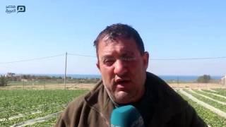 بالفيديو| في شمال غزة.. تعرف على أسرار مدينة الذهب الأحمر