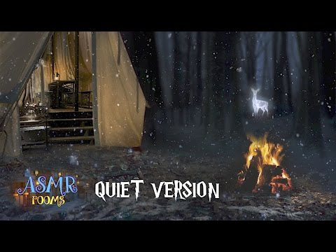 Forest of Dean Camp Fire Harry Potter ASMR - Ambience only - snow & forest night (closed giveaway)