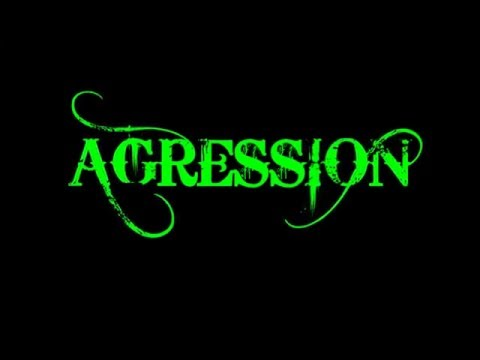 AGRESSION ☠ NARDFEST 2 MAJESTIC AT VENTURA THEATER CA 2014 HD