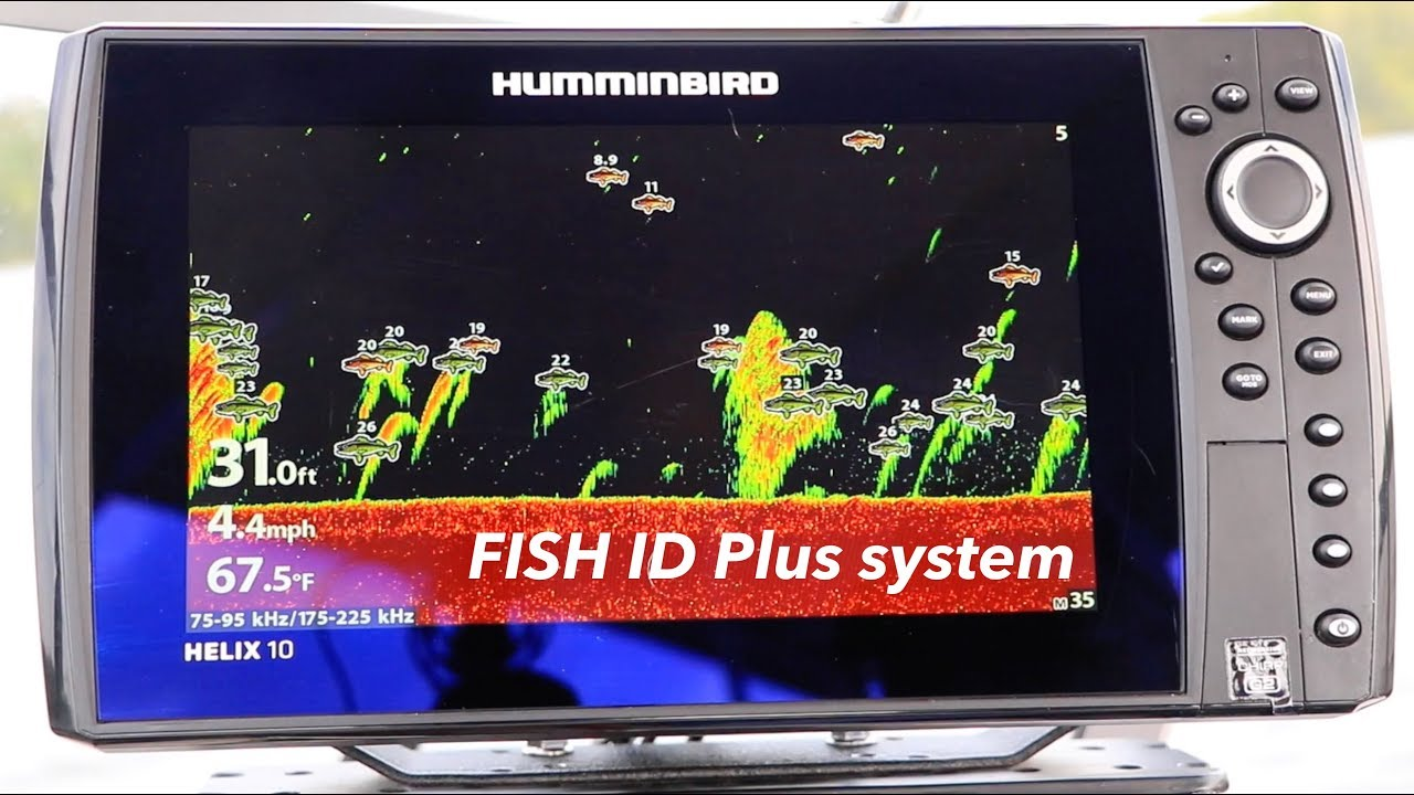 How To Read A Fish Finder Screen (A Beginners Guide to