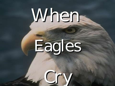 When Eagles Cry