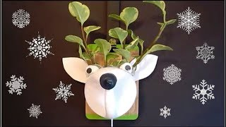Recycled Craft Ideas For Kids | DIY Recycle Plastic Bottle Moose Planter | DIY Room Decor Project