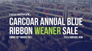Carcoar Annual Blue Ribbon Weaner Sale, Friday 26th March 2021