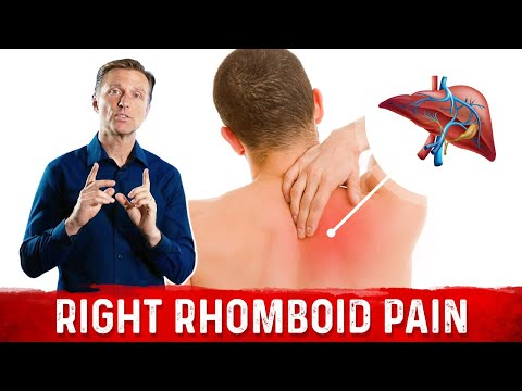 Your Liver is Triggering Your Right-Sided Shoulder Blade Pain