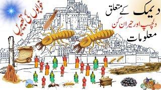 Shocking Facts about Termite   Interesting Facts About Creatures   Deemak   Hidden Secrets