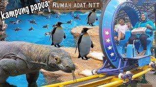 Kampung Papua & Rumah Adat NTT di Taman Safari Bogor