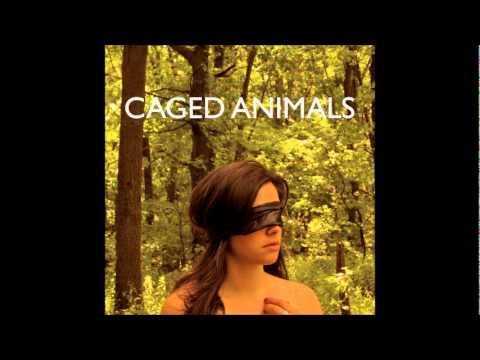 'All the Beautiful Things In The World' - Caged Animals