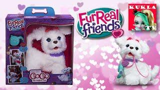 VLOG Магазин игрушек. FURREAL FRIENDS Интерактивный ходячий щенок GoGo и игривый щенок J.J.