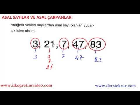 6. Sınıf Asal Sayılar Ve Asal Çarpanlar Konu Anlatımı