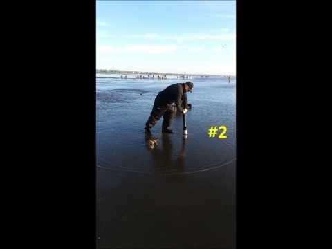 Clamhawk - The BEST clam gun on the beach!!