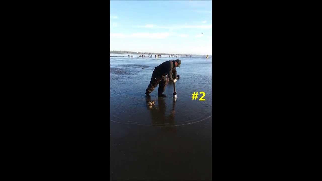 Clamhawk - The BEST clam gun on the beach!! - YouTube