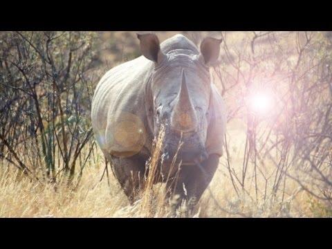 Urlaub in Namibia?! - Ein magisches Land!