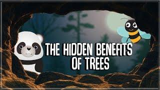 The Hidden Benefits of Trees | Mini Science #03