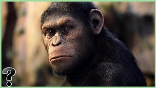 What If Planet Of The Apes Was Real?