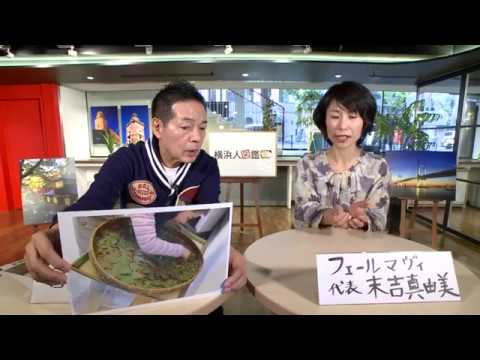横浜人図鑑 第450回 末吉真由美さん(2017年12月25日(月)放送)