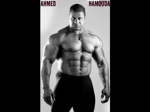 bodybuilder  ahmed hamouda