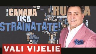VALI VIJELIE - Strainatate (COLAJ MANELE - HIT NOU 2015)