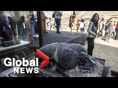 Egypt Unveils Cache Of Mummified Animals Including World's Largest Scarab Beetle