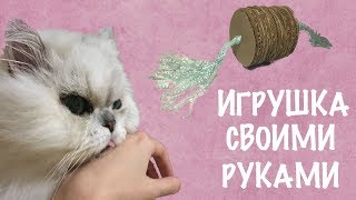 Смотри как сделать игрушку для кошки своими руками!