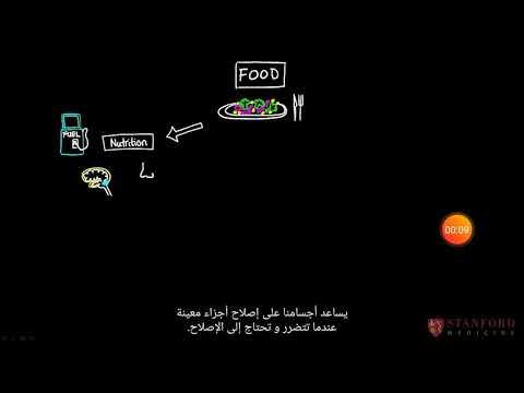 Cook for ur kids course : food is more than nutrition اطبخ من أجل اطفالك