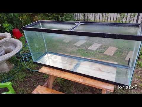 Estanque acuario para goldfish litros doovi for Estanque 2500 litros