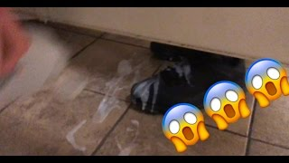 (GONE WRONG)Cumming on people's shoes in the bathroom prank!