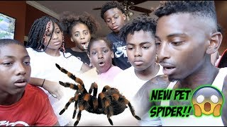 WE GOT A NEW PET TARANTULA & MYKEL GOT A SECRET CRUSH!!