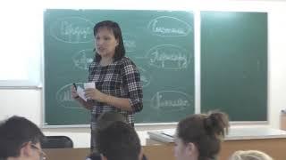 Урок биологии в 8 классе на тему