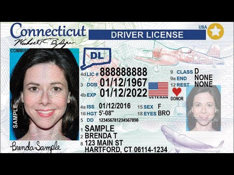 COMO TIRAR DRIVER LICENSE EM CONNECTICUT