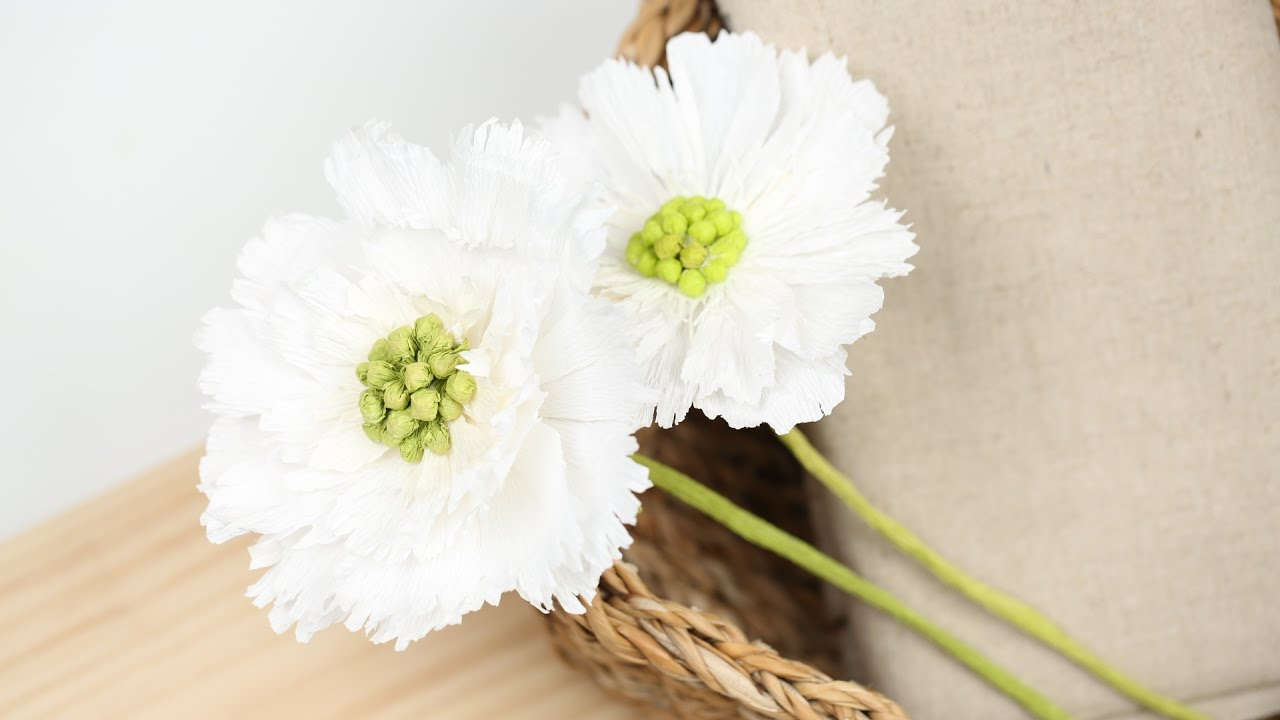 How To Make White Scabiosa Crepe Paper Flowers Super Easy Youtube