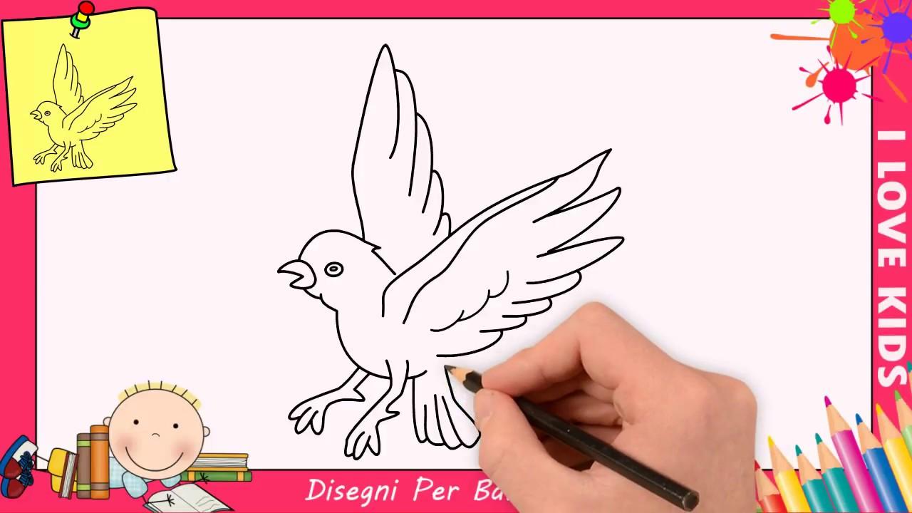 Come Disegnare Un Uccello Facile Passo Per Passo Per Bambini 4